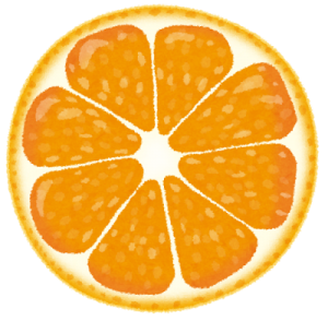 cut_fruit_orange-300x294