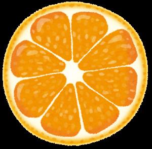 cut_fruit_orange-300x294